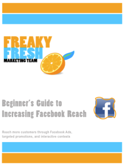 facebook reach free report